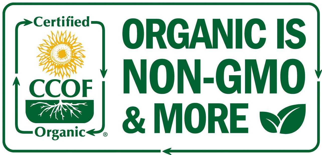 Organic Lettuce Producer